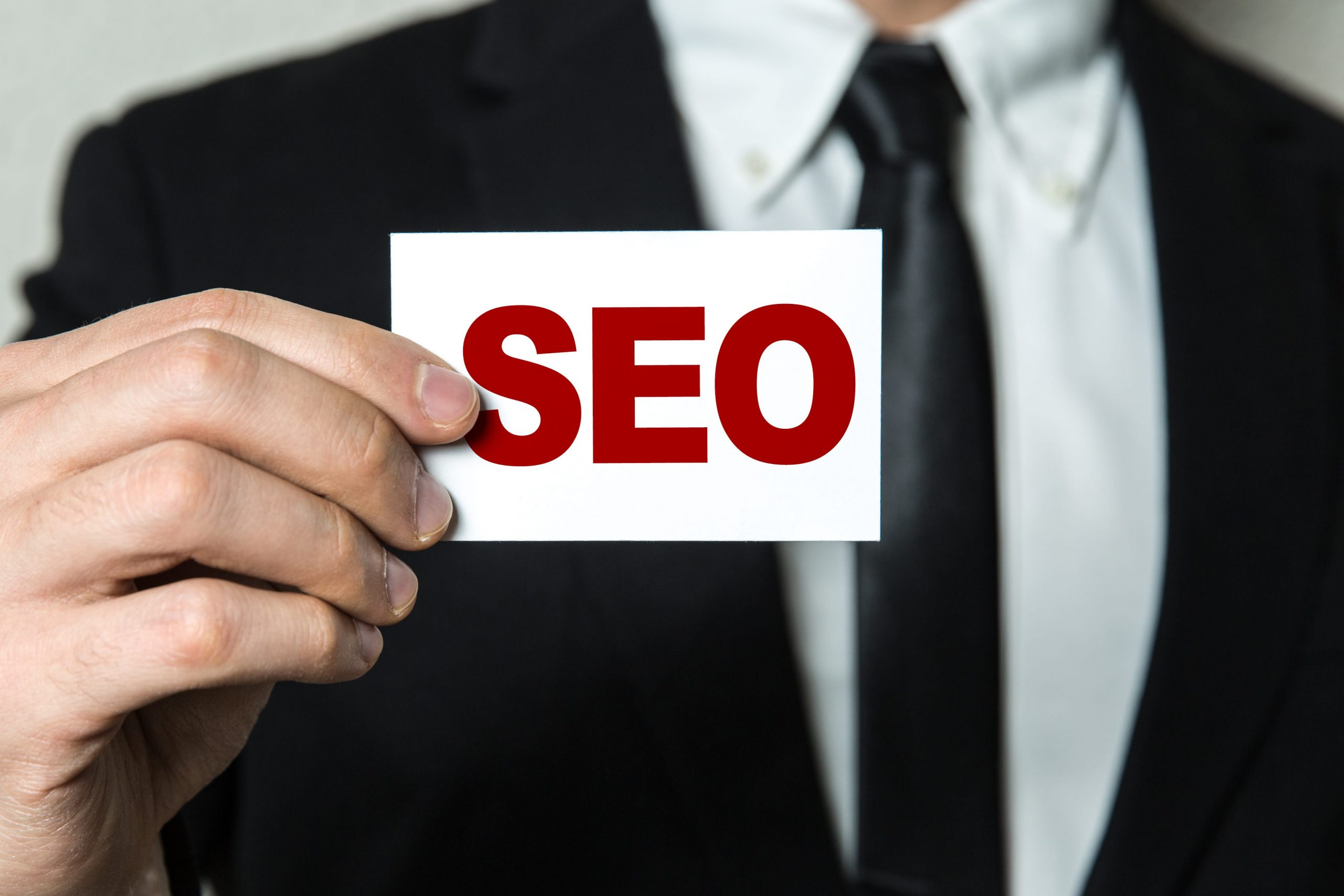 Freelance Business SEO Expert