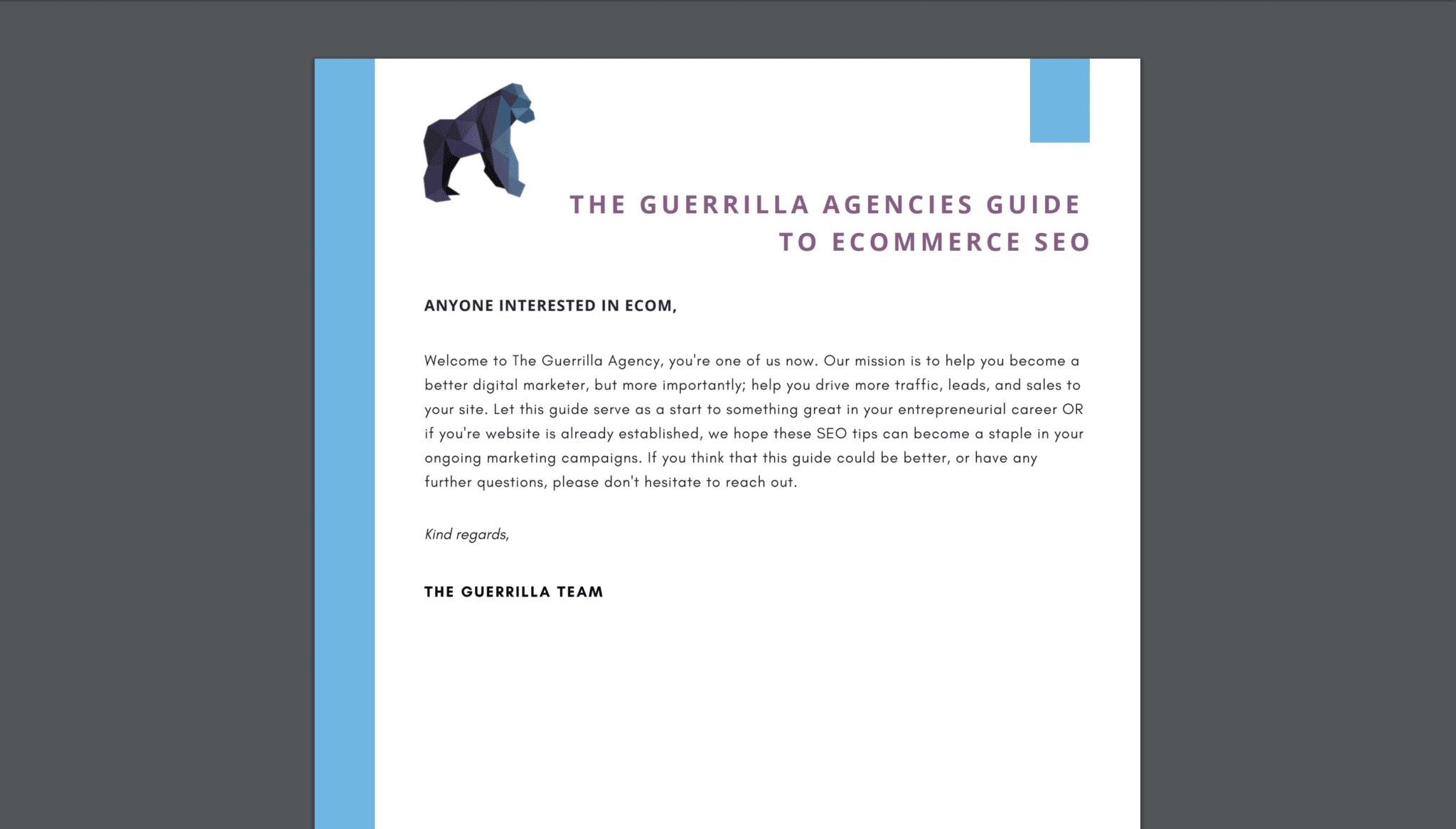eCom SEO Guide